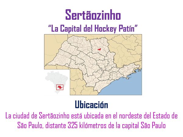 Sudamericano-Hockey-Femenino-2015-page-003